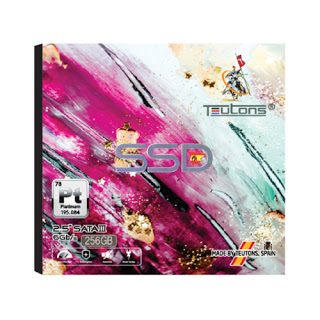 Teutons SSD Platinum Drive 256GB Internal 2.5 Inch SATA III- Best SSD of Electrovibe